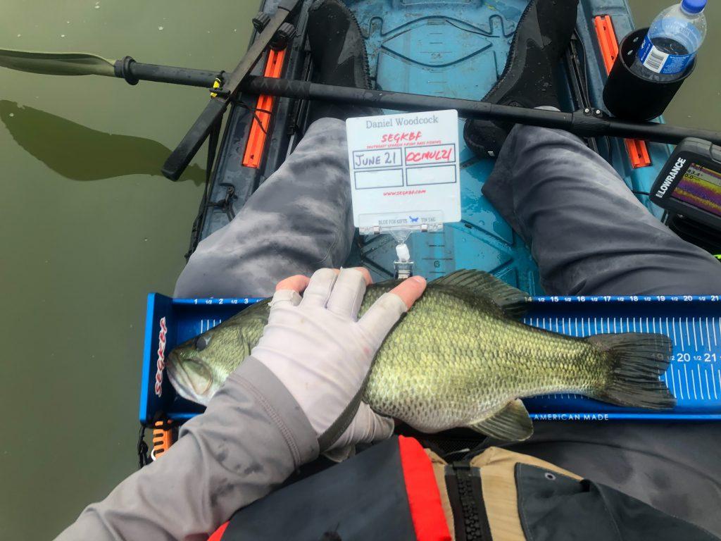 19.50 inch bass